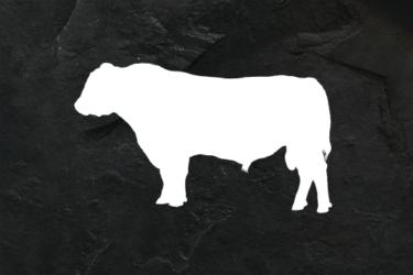 Oponka ‒ Skirt Steak